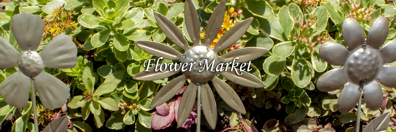 2019.06.04 - Everyday and Spring Decor_Flower Market